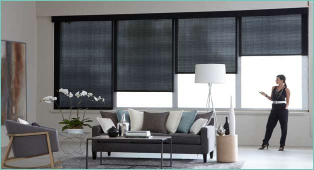 Drapery and Blinds - Cleaning Services - Carpet Cleaner New York